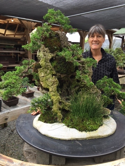 Rock Planting Workshop with Steve –  June 11