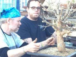finalizing limb choices