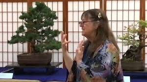 Kathy Shaner Workshop here at Plant City Bonsai June 17th